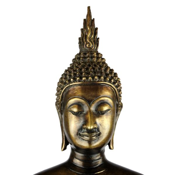 Close-up hoofd staande van Boeddha