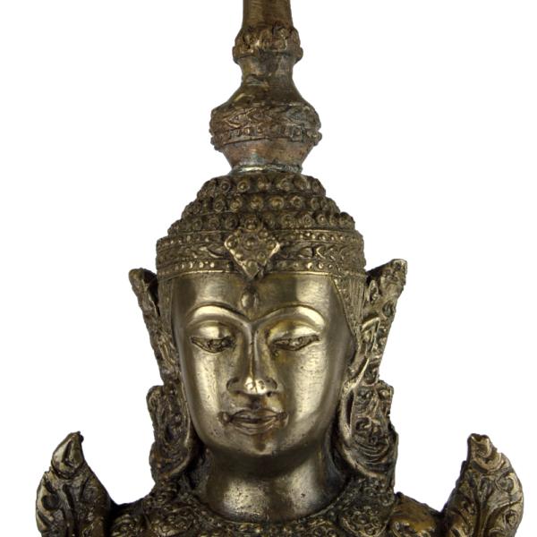 Close-up hoofd van Amitabha