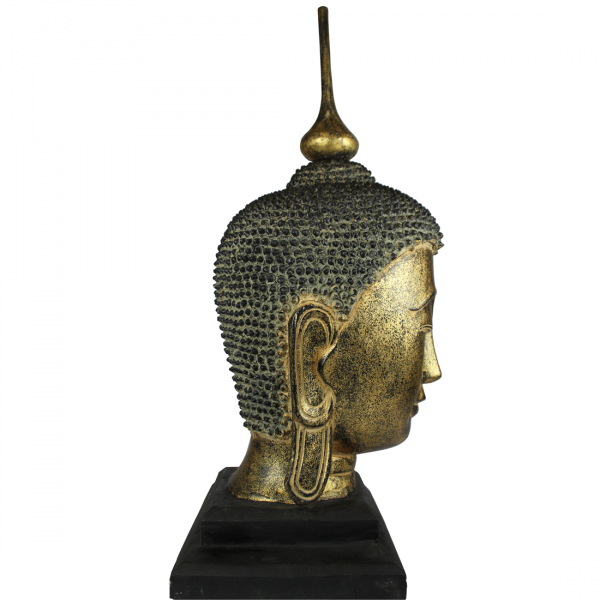 Zij-aanzicht Sukhothai Boeddhahoofd