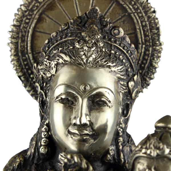 Close-up hoofd van Parvati