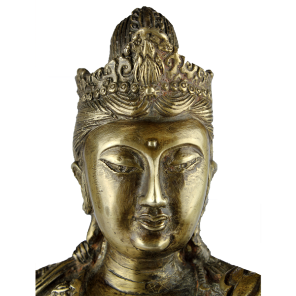 Close-up hoofd van Durga