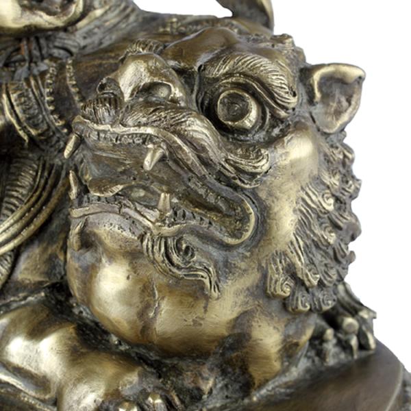 Close-up kop van de leeuwin