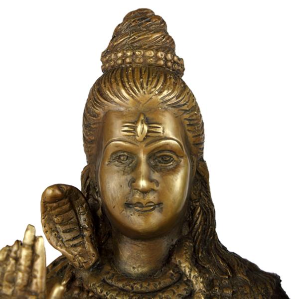 Close-up hoofd van Shiva
