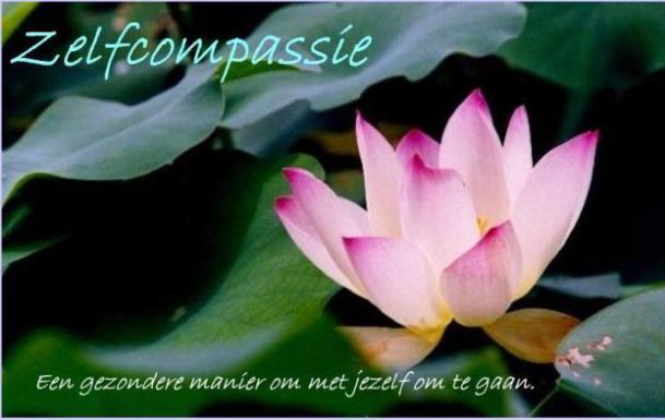 links naar Zelfcompassie